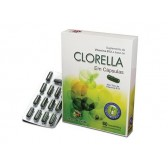 CLORELLA 60CAPS - TERRA VERDE